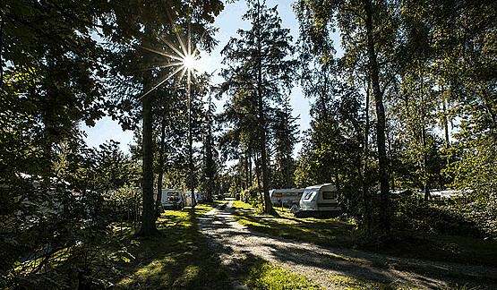campingplads_11