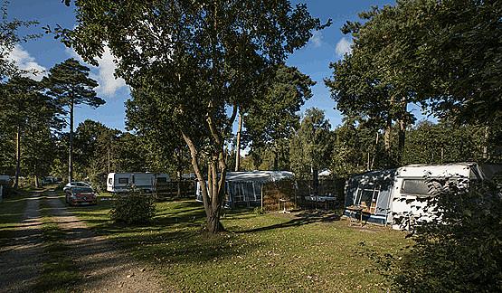 campingplads_9