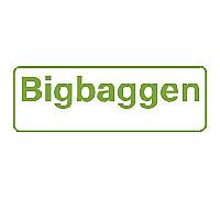 logo big bag ny