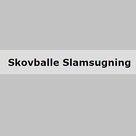 logo skovballe
