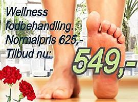 Wellness-5-nov-2020